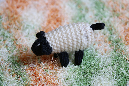 Knit toy off-white and black lamb on a textured knit dishcloth or washcloth in light orange, green, and off-white..