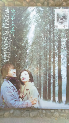 Take Winter Sonata Nami Island Pictures
