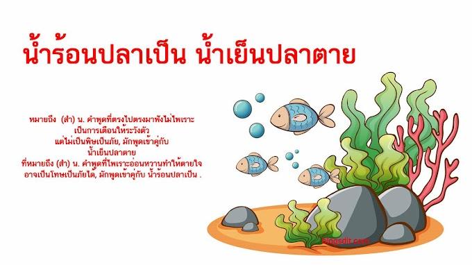 น้ำร้อนปลาเป็น น้ำเย็นปลาตาย หมายถึงอะไร ?