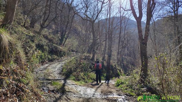 Cruce de caminos hacia Payares