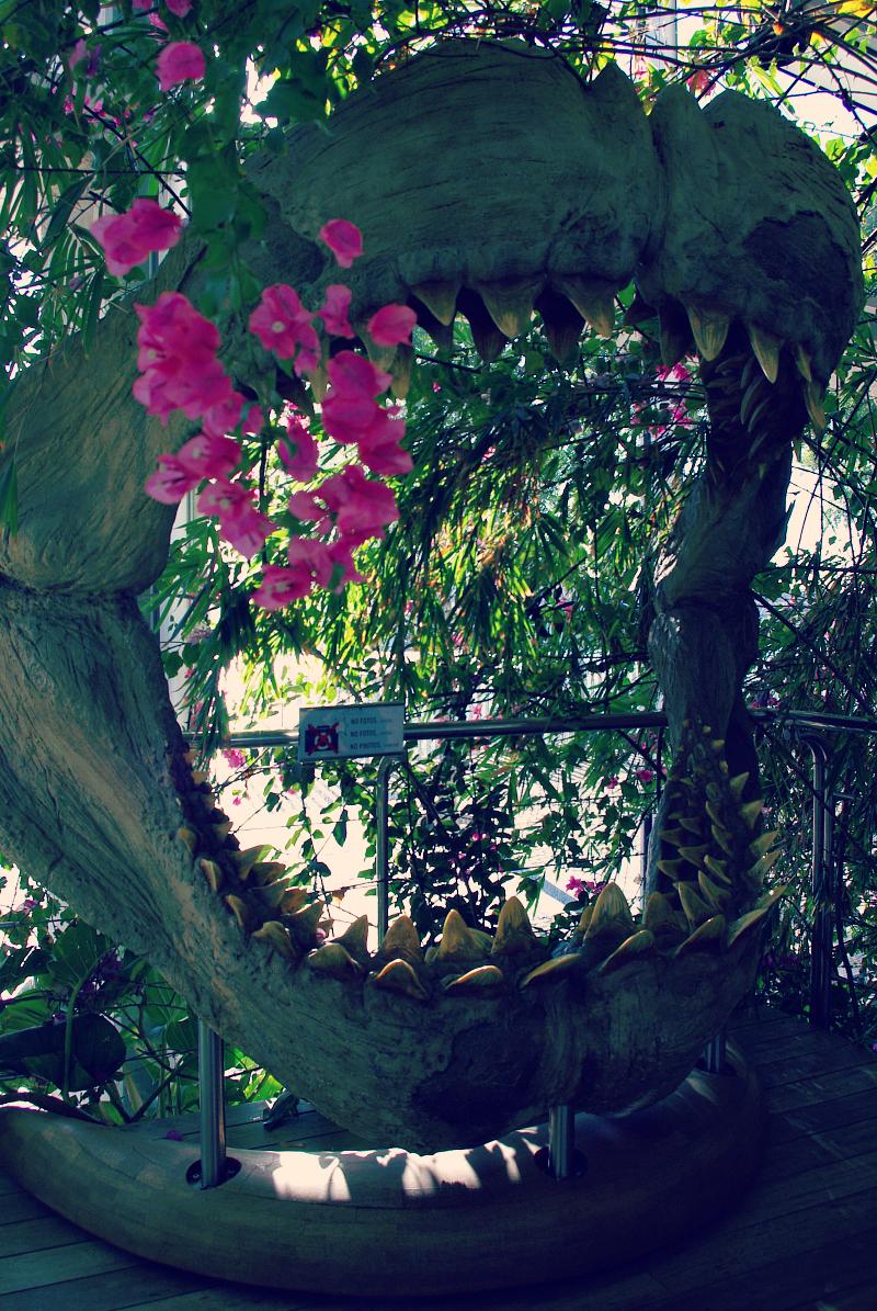 Paszcza megalodona - oceanarium w Barcelonie