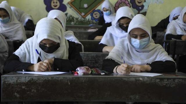 Pakar Intel Sebut Banyak Sekolah di RI Berkiblat ke Taliban, Cirinya: Tak Mau Menghafal Nama-nama Parpol