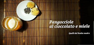 ricetta con il lievito madre, miele e cioccolato