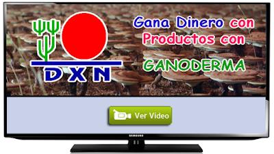 DXN EXPLICACION COMPLETA
