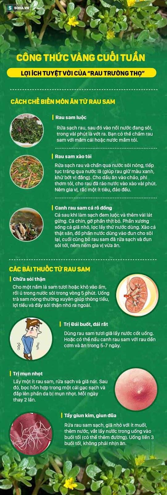Rau trường thọ - Bạn biết gì về nó thảo dược quý mà người Việt vẫn bỏ phí