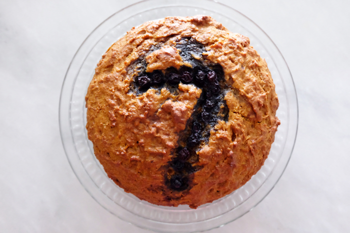 doggo cake plated
