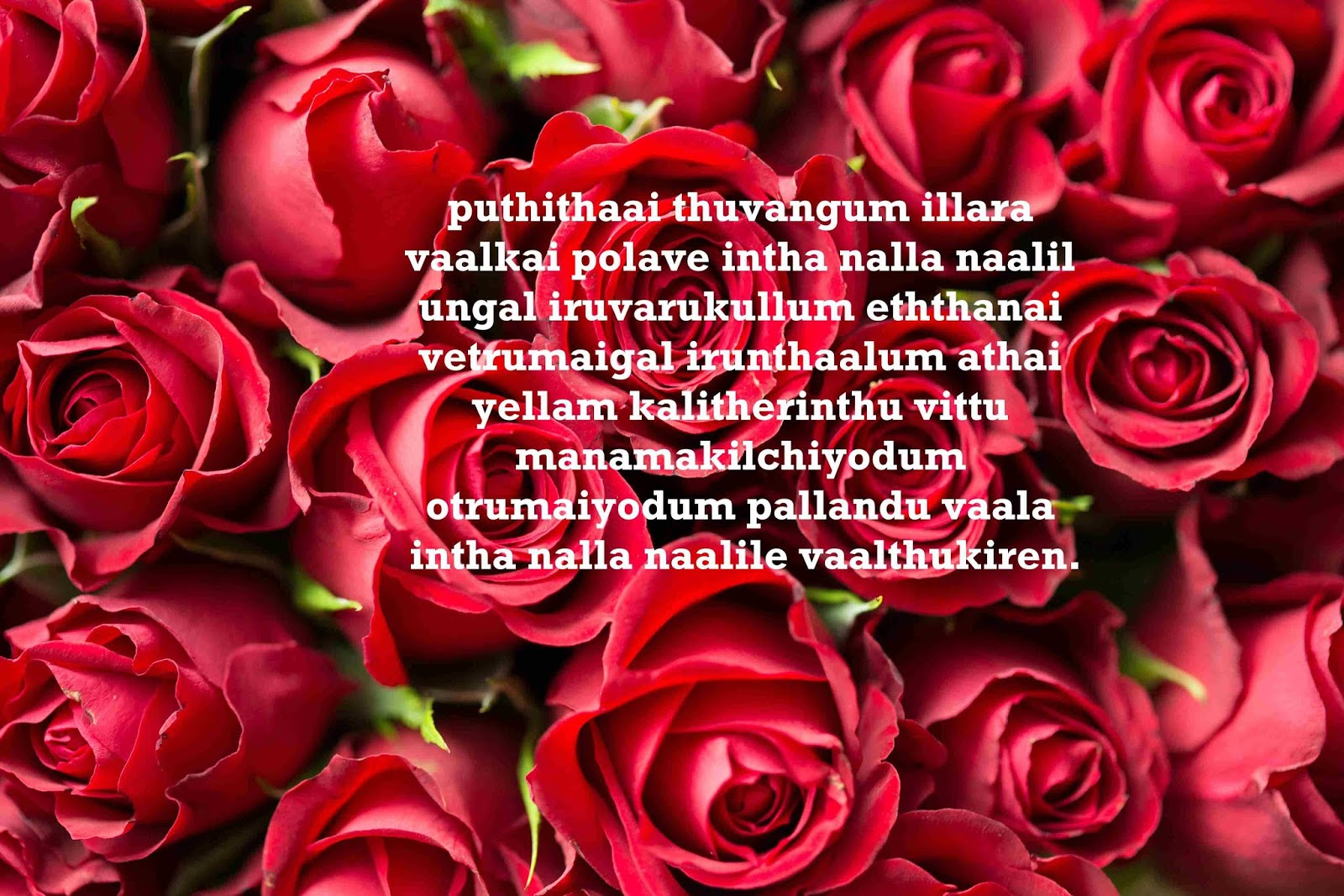 Top 20 Wedding Anniversary Wishes In Tamil Kavithai