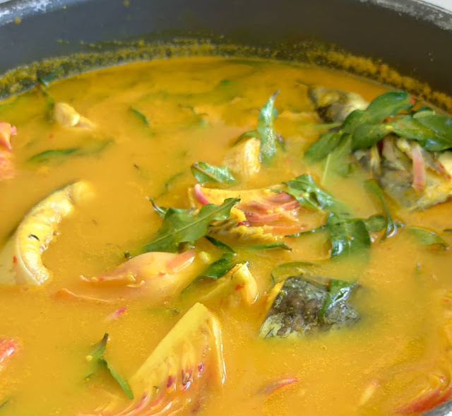resepi mudah dan sedap ikan patin masak tempoyak