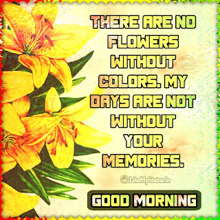 Love good morning quote
