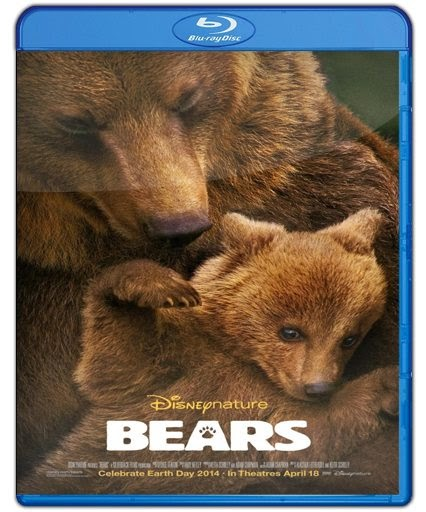 Bear 1080p HD Latino