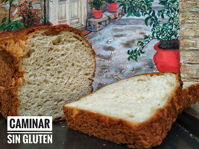 Rebanadas de pan sin gluten y sin lactosa