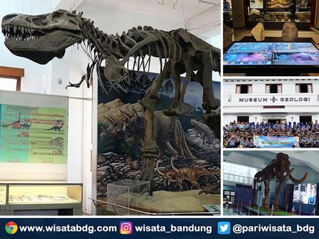 Fasilitas Terbaru dan Harga Tiket Museum Geologi Bandung Tahun 2020