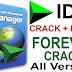 IDM Internet Download Manager 6.37 Build 8 Beta Crack Free Download