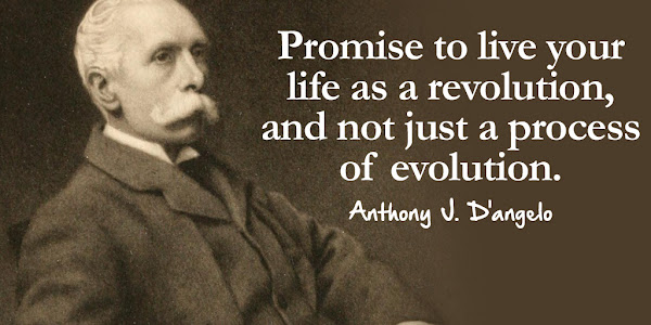 Anthony J. D'angelo: Promise to live your LIFE as a REVOLUTION, and not just a process of EVOLUTION - Quotes