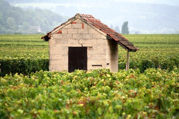 Burgundy, Bourgogne-Franche-Comté