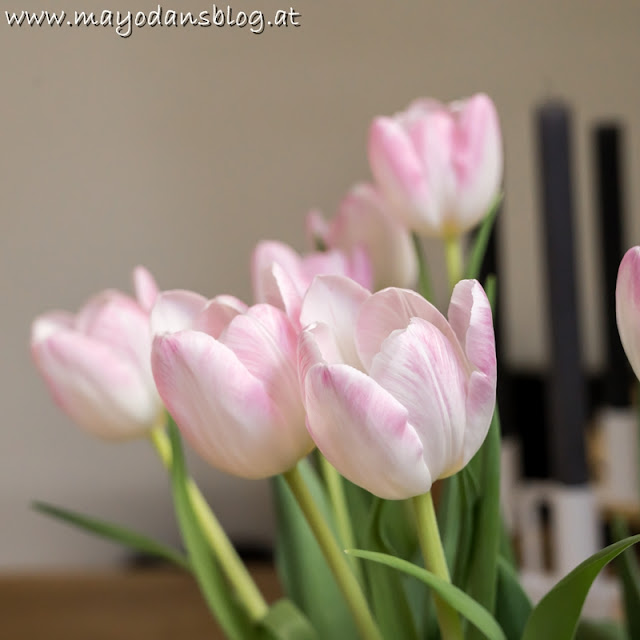 Flowerfriday mit Tulpen