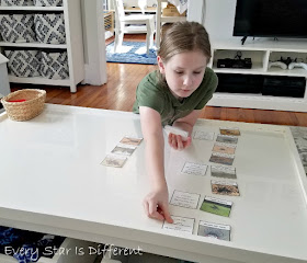 Montessori Arachnids Who Am I? Activity in Action
