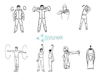 Разминаем мышцы плечей вращательными движениями, в сгибах локти, кисти, пальцы рук сжимаем и разжимаем.