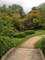 un altro sentiero del giardino