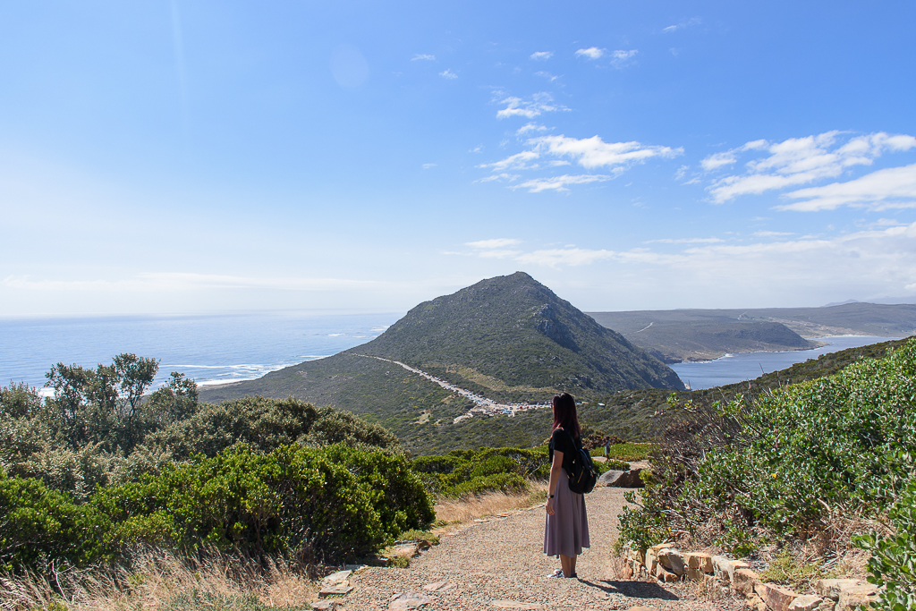scenery at cape of good hope top destinations in cape town south africa