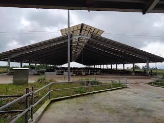 PT. Ultra Sumatera Dairy Farm