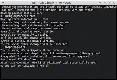 Install dependesi webmin dahulu