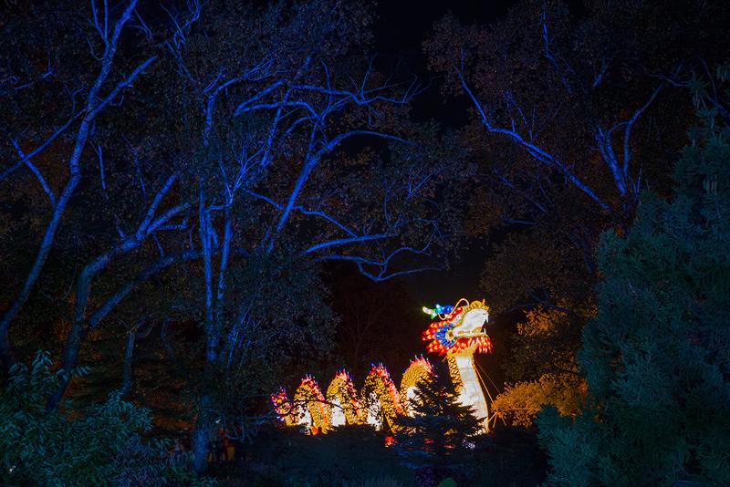 Arts Without Borders China Lights A Huge Crowd Pleaser At Boerner Botanical Gardens