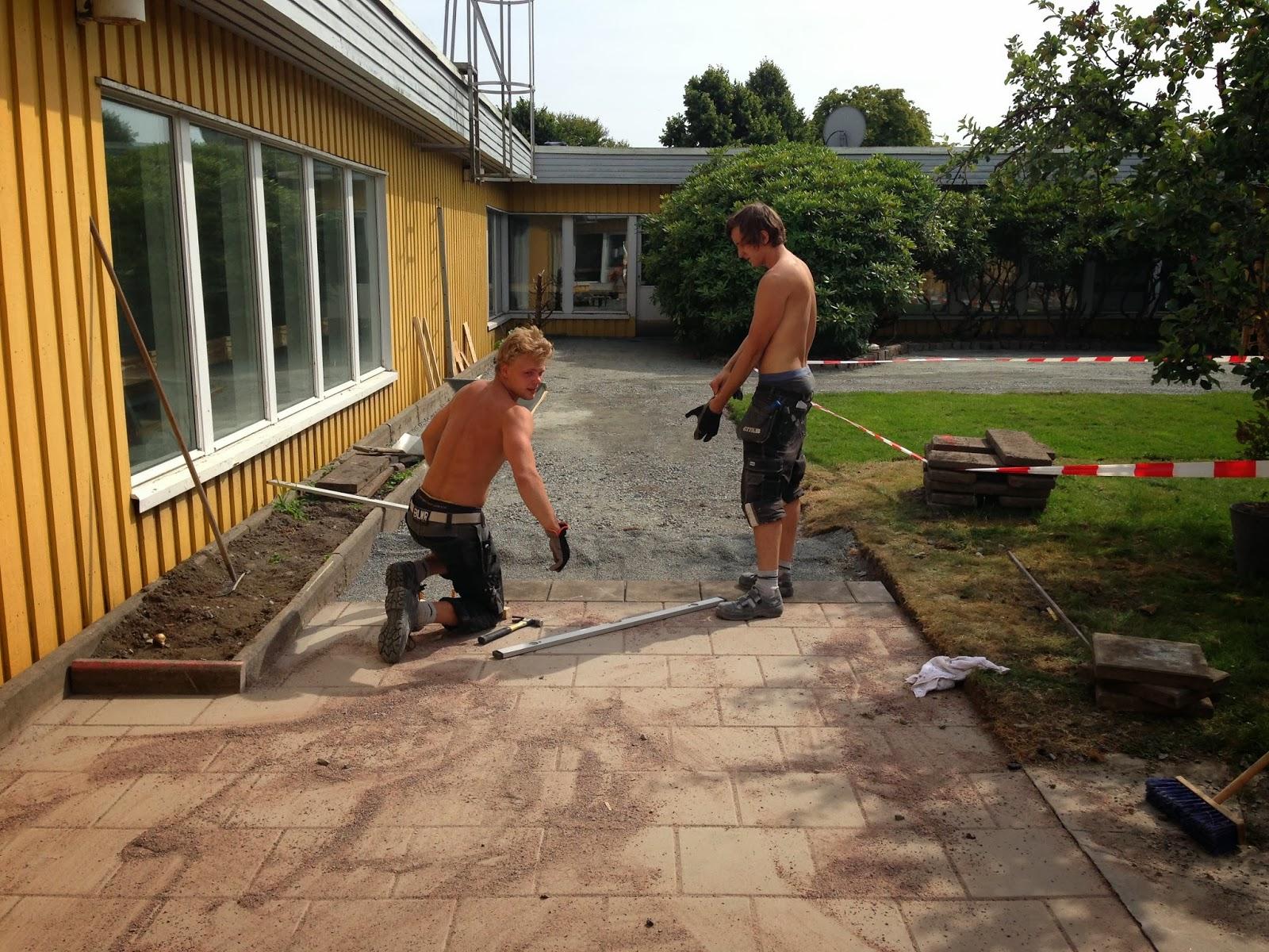 Trädgård och design för alla: Plattläggning och gräsmatta