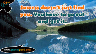 Motivational quote - Success doesn't just find you. You have to go out and get it.