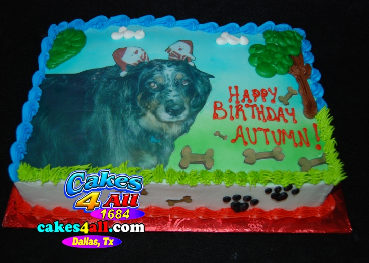 Pet Birthday Cake Dallas
