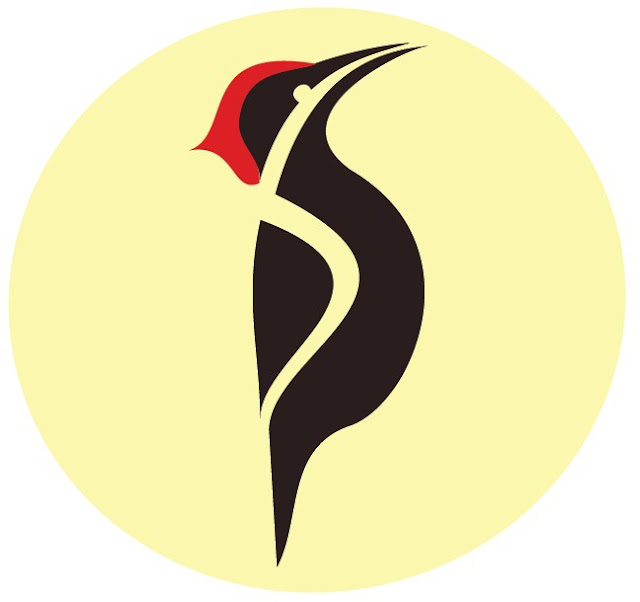 graphic design logo company