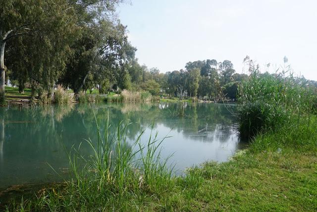 אגם בשמורת תל אפק