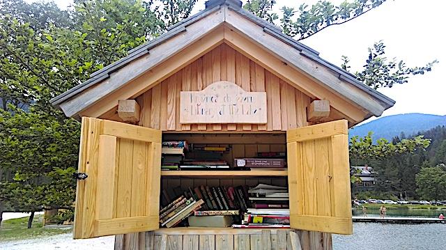 Library at the Lake
