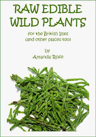 The cover of Raw Edible Wild Plants by Amanda Rofe