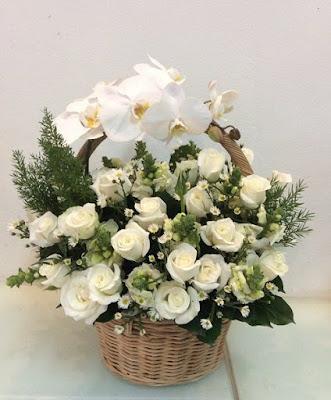 gio hoa hong trang
