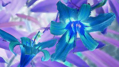 Flor duplicada+contorno 12-50+oux 255 JotaV