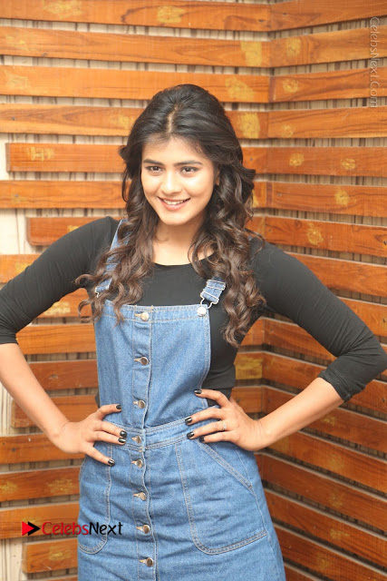 Actress Hebah Patel Stills at Nanna Nenu Naa Boyfriends Movie Interview  0001.JPG