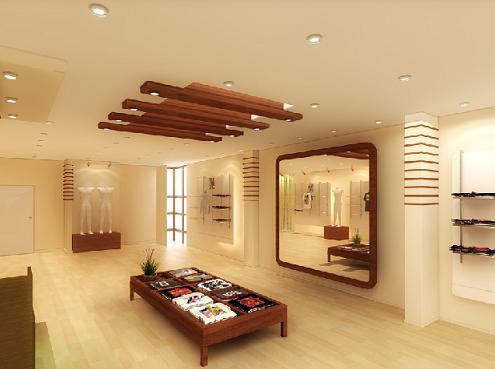 Modern house ceiling pictures