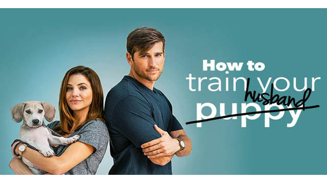 How To Train Your Husband (2018) English Movie 720p BluRay Download