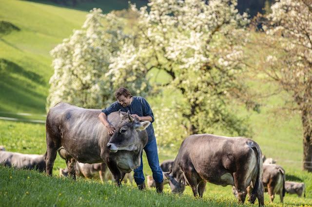 Vom Kunststudium zum innovativen Landwirt: Georg Blunier – Ein Pionier der Hoftötung