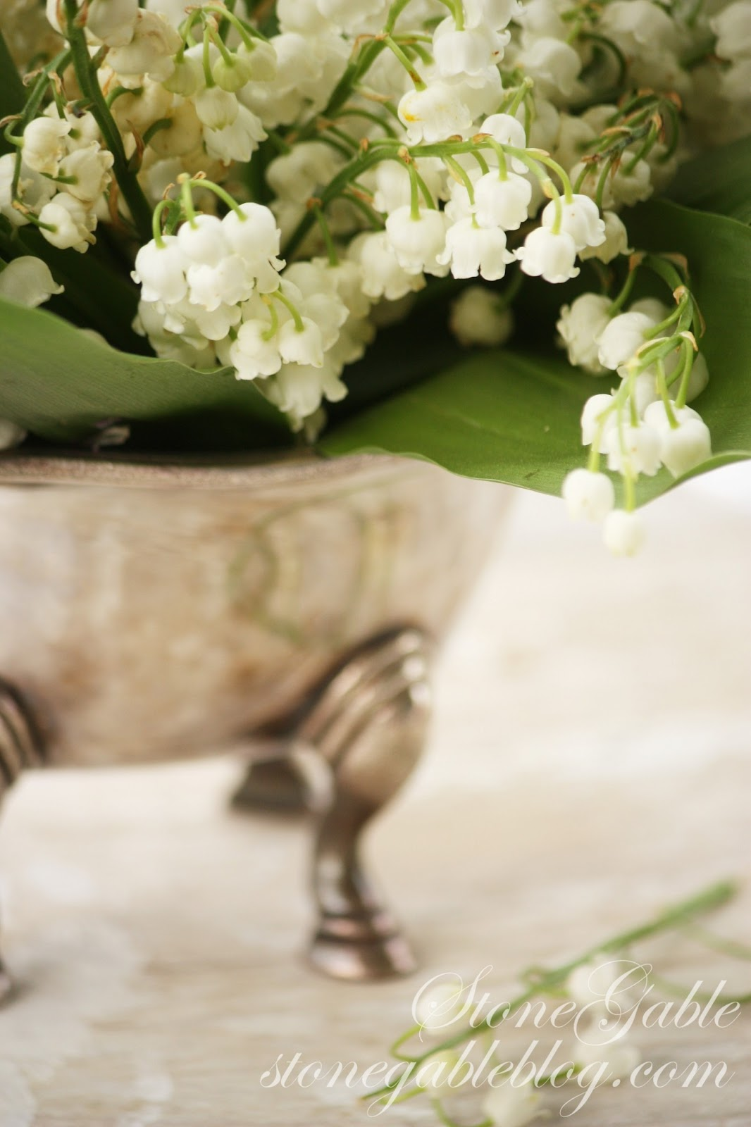 Flowers online 2018 lily of the valley flower arrangement flowers online 2018 lily of the valley flower arrangement flowers online izmirmasajfo