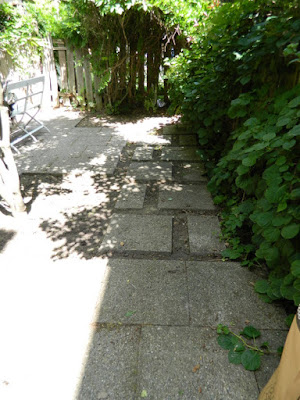Leslieville garden cleanup after weeding by Paul Jung Gardening Services Toronto