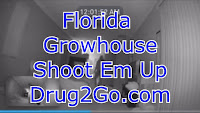 Florida Growhouse Video Shoot Out