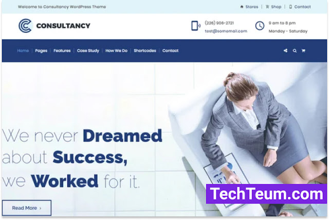 Consultancy by designthemes (Themeforest)