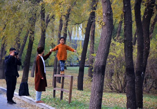 Tipe Pola Asuh Orang Tua Kepada Anak
