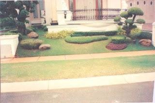 Galeri Taman - Tukang Taman Surabaya 16