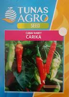 tanam cabe rawit, benih carika, tunas agro seed, tanaman cabe, cabai,jual benih cabe, toko pertanian, toko online, lmga agro