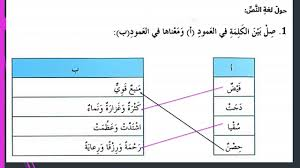 حل درس قيمة العلم لغة عربية