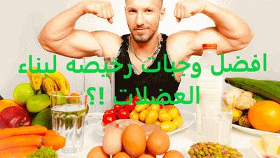 اغذية كمال الأجسام للمبتدئين