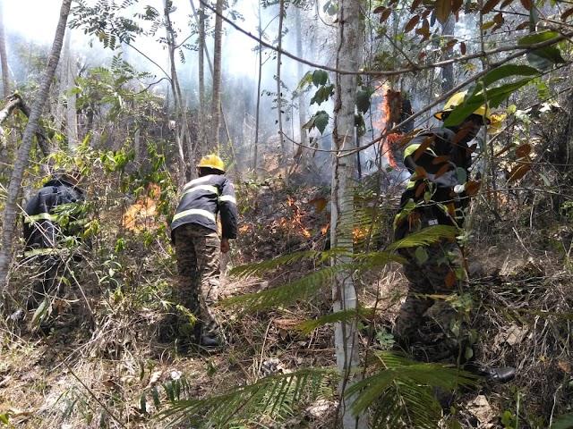 Comandante del Ejército activa Brigada de Mitigación de Desastres y envía miembro la UHR a combatir incendio detectado en la Loma Caribe de la provincia Monseñor Noel